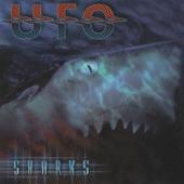 UFO - Fighting Man