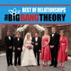 The Big Bang Theory, Best of Relationships wiki, synopsis