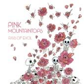 Pink Mountaintops - Comas