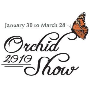 Missouri Botanical Garden Orchid Show 2010
