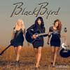 Strong - Blackbyrd