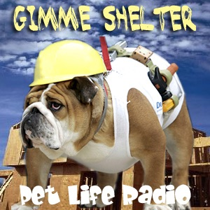 Gimme Shelter - Pets & Animals on Pet Life Radio (PetLifeRadio.com)