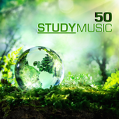 50 Study Music - Studying Music & Concentration Music for School and University Exam Study, Brain Stimulation, Improve Memory and Concentration
