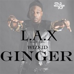 songs like Ginger (feat. Wizkid)