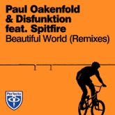 Beautiful World (Remixes) [feat. Spitfire]