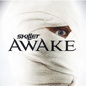 Skillet - One Day Too Late