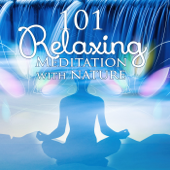 101 Relaxing Meditation with Nature – Zen Tracks, Asian Music, Healing Spirituality, Nature Sounds, Yoga, Spa, Soothe Music Therapy