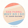 Sam Padrul - Why Do I Do (La Felix Remix) [feat. Jason Gaffner] artwork