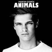 [Baixar ou Ouvir] Animals em MP3
