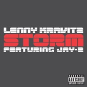 Storm (Just Blaze Remix) [feat. Jay-Z] - Single