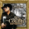 Ride Through the Country (Revisited), Colt Ford