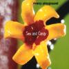Marcy Playground - Sex & Candy artwork