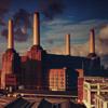 Pink Floyd - Animals artwork