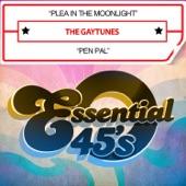 The Gaytunes - Plea in the Moonlight