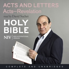 NIV Bible 8: Acts and Letters (Unabridged)