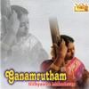 Ganamrutham Nithyasree Mahadevan