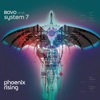 Phoenix Rising LP ジャケット写真