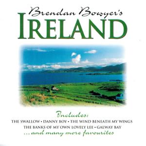 Brendan Bowyer - Boolavogue