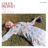 Chuck Prophet - You Did (Bomp Shooby Dooby Bomp) bild