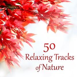 50 Relaxing Tracks Of Nature U2013 Autumn, Rain, Deep Meditation, Secret Garden,  Spa Therapy, Massage, Instrumental Music, Healing Song