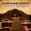 Something's Going Down (feat. Twista, GLC & Sugar Blue) - Single, Wayne Baker Brooks