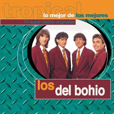 Lo Mejor de los Mejores, Vol. 1 - Los Del Bohio