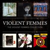 Violent Femmes - Fool In The Full Moon