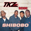 TKZee - Shibobo - EP artwork