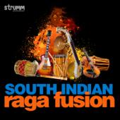 South Indian Raga Fusion