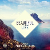 Beautiful Life (feat. Sandro Cavazza) [Radio Edit] - Single