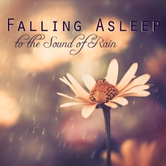 Falling Asleep to the Sound of Rain - 1 Hour Relaxing Sleep Music to Help you Sleep Well, Relax and Dream