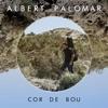 Albert Palomar