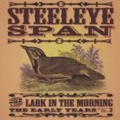Steeleye Span - Cold, Haily, Windy Night