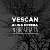 In dreapta ta (feat. Alina Eremia) - Single, Vescan