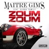 Zoum Zoum (feat. Djuna Family) - Single, Maître Gims