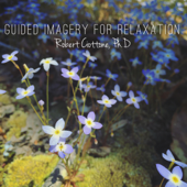 Guided Imagery for Relaxation