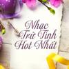 Minh Hiep - Xót Xa artwork