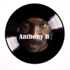 Anthony B - It's Over Now Remaster artwork