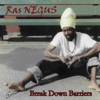 Break Down Barriers - Ras & Negus
