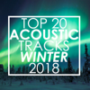Top 20 Acoustic Tracks Winter 2018 (Instrumental) - Guitar Tribute Players