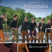 """Arcomusical - Berimbau Quartet, No. 1 """"Chip"""""""