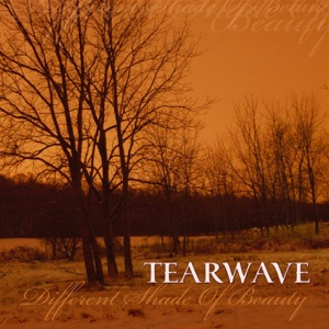 Tearwave - Under the Milky Way (The Church Cover)