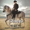 El Bebeto - No Que No Banda Y Tololoche Album