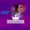 Celestine Donkor - Okrokrohene artwork