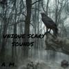 Unique Scary Sounds - EP - AM