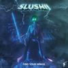 Find Your Wings - Slushii
