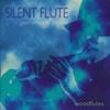 Silent Flute - Gennem Rum - Henrik Jespersen
