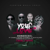 Your Love (Feat. Charly Black, Pitbull & Julie Elody) Radio Mix] - Single