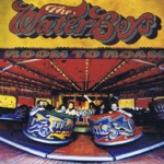 The Waterboys - The Raggle Taggle Gypsy (2008 Remaster)