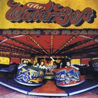 Room to Roam (Deluxe Version) by The Waterboys on Apple Music
